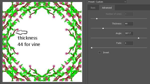 Vine thickness and angle-1